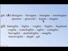 Vocabolario: Rettili e Anfibi - YouTube
