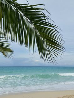 Under the coco Beach, Water, Outdoor, Frames, Gripe Water, Outdoors, The Beach, Beaches, Outdoor Games