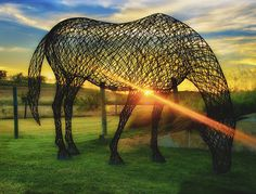 The wired horses in Austin Ranch are quite nice to shoot. I had nice timing to catch this right as the sun was ready to set. Chicken Wire Art, Chicken Wire Sculpture, Wire Art Sculpture, Horse Sculpture, Outdoor Sculpture, Outdoor Art, Animal Sculptures, Abstract Sculpture, Wire Sculptures