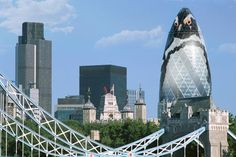 Plans for @ZSLlondonzoo to do a stunt turning The Gherkin into The Penguin