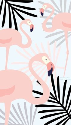 New party wallpaper iphone art prints 39 Ideas Screen Wallpaper, Mobile Wallpaper, Wallpaper Backgrounds, Iphone Wallpaper, Wallpaper Kawaii, Wallpaper Quotes, Flamingo Wallpaper, Summer Wallpaper, Trendy Wallpaper