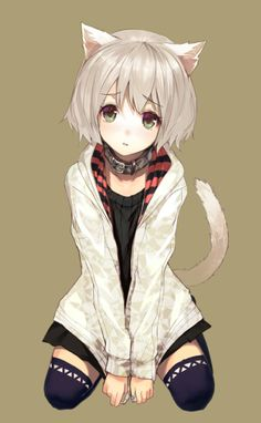 Anime Neko girls are loved all over the world. What are catgirls? what is their origin and who are the most popular anime Neko girls around? in this post, I will answer all these questions and will provide comprehensive information on the Nekomimi. Anime Neko, Kawaii Anime Girl, Anime Girls, Lolis Neko, Manga Kawaii, Anime Girl Neko, Anime Art Girl, Manga Anime, Manga Girl
