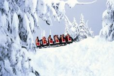 Grouse Mountain's sleigh ride, Vancouver, BC.
