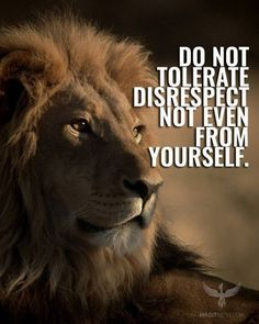 100 Motivational quotes for life That Will Inspire You to be Successful 100 Motivation 80 80 Motivational Quotes For Men, Short Inspirational Quotes, Positive Quotes, Best Quotes, Inspirational Thoughts, Citation Lion, Lion Quotes, Quotes With Lions, Lion Memes