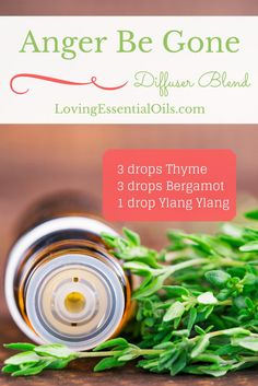 Anger Be Gone Essential Oil Diffuser Blend | Diffusing Recipe | All Natural Anger Management | Thyme Oil | Bergamot Oil | Ylang Ylang Oil