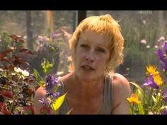 The Gardener's Garden - Carol Klein