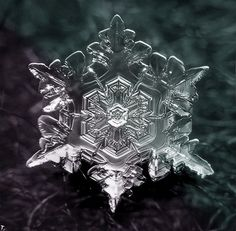 Snowflakes, nature's art...