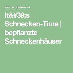 It's Schnecken-Time | bepflanzte Schneckenhäuser