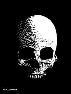 Skull-A-Day: Scratchboard Skull Jellyfish Drawing, Jellyfish Painting, Skull Painting, Ink Illustrations, Illustration Art, Black Paper Drawing, Scratchboard Art, Scratch Art, Skull Art