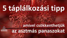 5 táplálkozási tipp, amellyel megelőzhetjük vagy csökkenthetjük az asztmás tüneteket. http://www.ambulanciak.hu/index.php/igy-is-megelozhetjuk-az-asztmas-tuneteket/