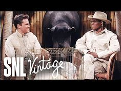 Brian Fellow's Safari Planet: Porcupine and a Pig - SNL - YouTube Snl Youtube, Cowboy Hats, Safari, Comedy, Western Hats, Comedy Movies
