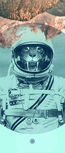 Tigers in space? (for Anja) lmao
