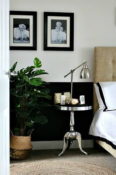 The Best Faux Plants - Mad About The House