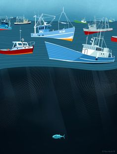 Overfishing... Is this inspiration to stop overfishing? Buy locally sourced, sustainably caught fish.