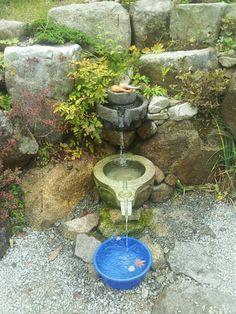 Korea natural water