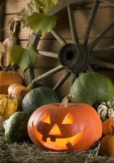 Photo about Carved halloween pumpkin at night close up shoot. Image of festive, colorful, harvest - 3319276 Happy Halloween, Image Halloween, Halloween Art, Holidays Halloween, Halloween Decorations, Halloween Pumpkins, Halloween Pictures, Fall Pumpkins, Pumpkin Decorations