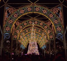 Christmas Lights Epcot Center Disney
