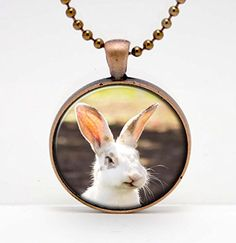 Rabbit Face Photo Funny Expression Derp Art Glass Pendant or Key Chain- 30 mm round- Chain Included- Made to Order ** Check out this great product. (Amazon affiliate link)
