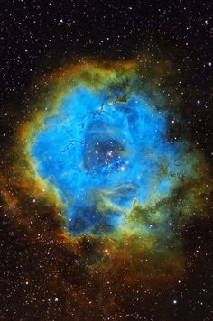 The Rosette Contains: NGC 2252, NGC 2244, Rosette nebula, NGC 2239, The star 12Mon  Credit: NASA/Hubble, Richard S. Wright Jr. AstroBin
