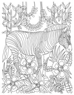 Zebra Animal Adult Coloring Book Stress Relieving By LiltColoringBooks