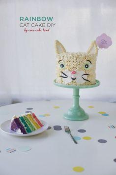 diy rainbow cat cake