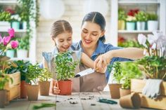Happy family in spring day. photo by choreograph on Envato Elements Arkansas, How Plants Grow, Discovery Family, Bulbs And Seeds, Seed Packaging, Free Plants, Family Garden, Family Adventure, Lifestyle