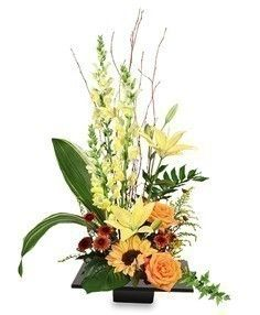 Expressive Blooms Arrangement in Columbia, SC - BALLOONS ARCHES & FLOWERS