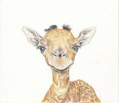 Baby animal print for nursery  Giraffe digital download