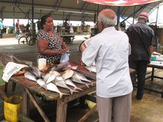 Fischmarkt in Negombo, Sri Lanka (2)