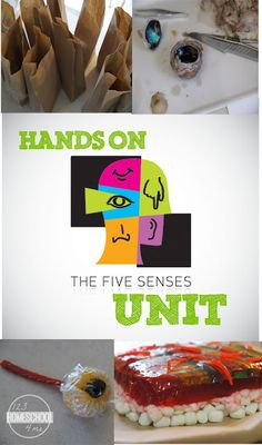 FREE Five Senses Unit for preschool, kindergarten, homeschool - so many fun, hands on science activities for kids to explore taste, smell, see, hear, and feel. GREAT IDEAS!