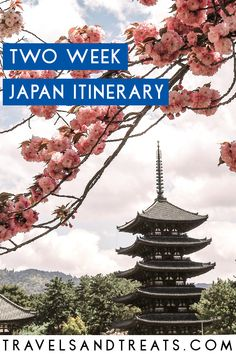 Two weeks in Japan Itinerary: Where to go in Japan when you only have 2 weeks.