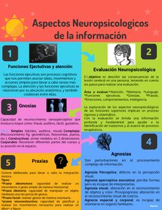 Lesión Cerebral, How To Create Infographics, Definitions, High Definition, Image