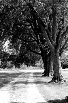 Rustic Black and White Photograph titled On the by KABPhotography, $15.00