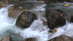 Stream in the Forest (2 Clips) by Pro-Stock 2 Clips. Cinematic 4K. Super stop motion waterfall slider dolly water fall flows flow stream creek streams creeks brook brooks riv