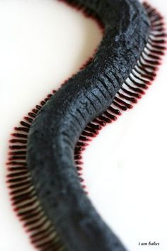 Creepy Millipede Cake {Halloween}