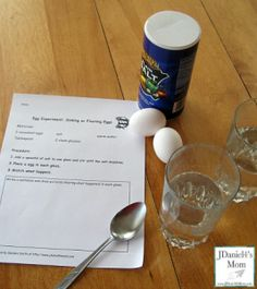supplies for floating or sinking egg experiments with free recording sheet