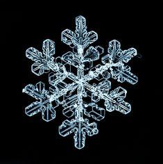 Macro Images of Snowflakes by Sergey Kichigin