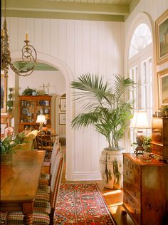 British Colonial, love the walls, rug, furniture, ahhh the plants... love it all...