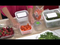 OXO Greensaver Produce Keeper & Carbon Refill Set with David Venable - YouTube