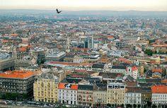 #Budapest #Hungary #Europe #Travel #Bird
