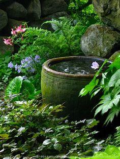 Shade garden water feature