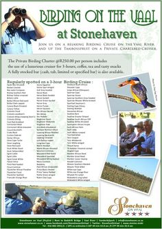 Birding on the Vaal River at Stonehaven - a 3 hour private birding charter with snacks and a fully licensed bar on the Vaal from Stonehaven on Vaal. Special Promotion, Things To Do, Cruise, River, Snacks, Bar, Things To Make, Appetizers, Cruises