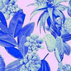 Leaf and cactus print Rhianna Ellington * Real Pattern * The Inner Interiorista Motifs Textiles, Textile Prints, Textile Patterns, Floral Prints, Graphic Patterns, Color Patterns, Print Patterns, Pattern Illustration, Graphic Design Illustration