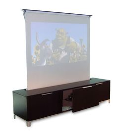 Once again, ugly but a cool idea for hiding the projector screen.