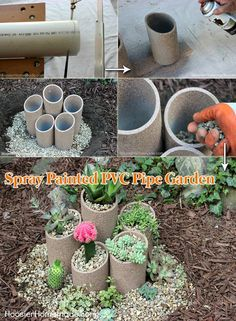 Use PVC pipes and spray paint to make a succulent garden.