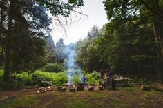 Photo By Jason Briscoe Cooking Classes, Cooking Time, Plants That Repel Bugs, Landscape Photography, Travel Photography, Cooking Herbs, Dinner Salads, Sugar Free Recipes, Backyard Patio