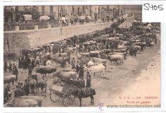 GERONA- A.T.V.-541- FERIAL DE GANADO- (5405) (Postales - España - Cataluña Antigua (hasta 1939) - Girona)