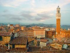 Rooftops in Siena...