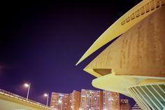 Photo of Palau de les Arts, ©2014 Dana Hursey Photography