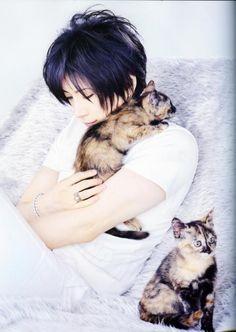 cats and GACKT.